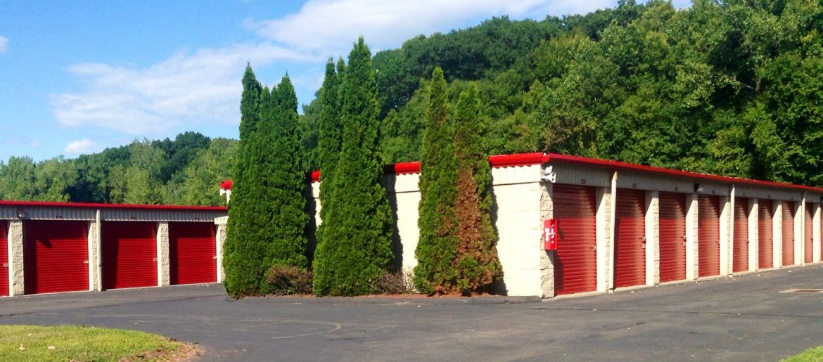 Photo of garage-style storage units in a green environment.