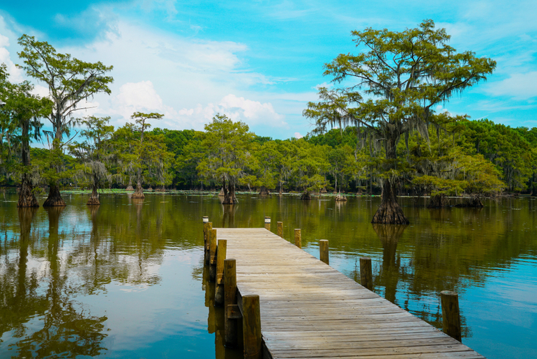 Caddo Lake State Park in East Texas